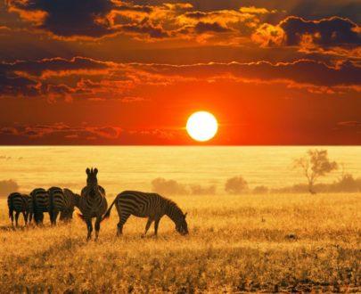 TOUR GOLDEN AFRICA+ MAURITIUS